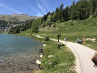 Vedi album 2017 Gita St Moritz